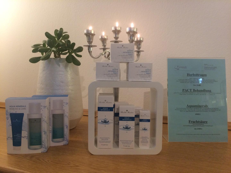 Das Bild zeigt eine Auswahl von Kosmetikprodukten