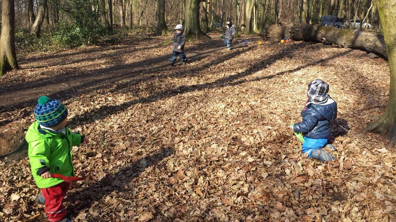Das Bild zeigt Kinder im Wald