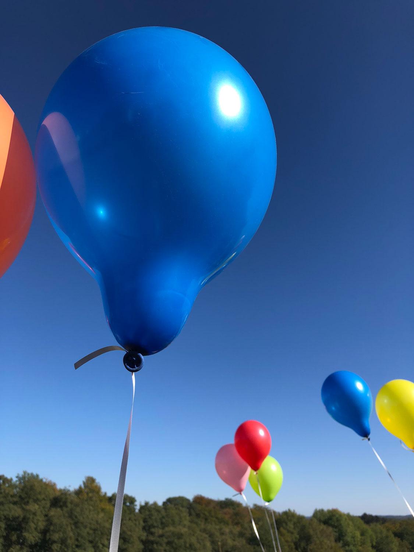 Auf dem Bild sind bunte Luftballons zusehen