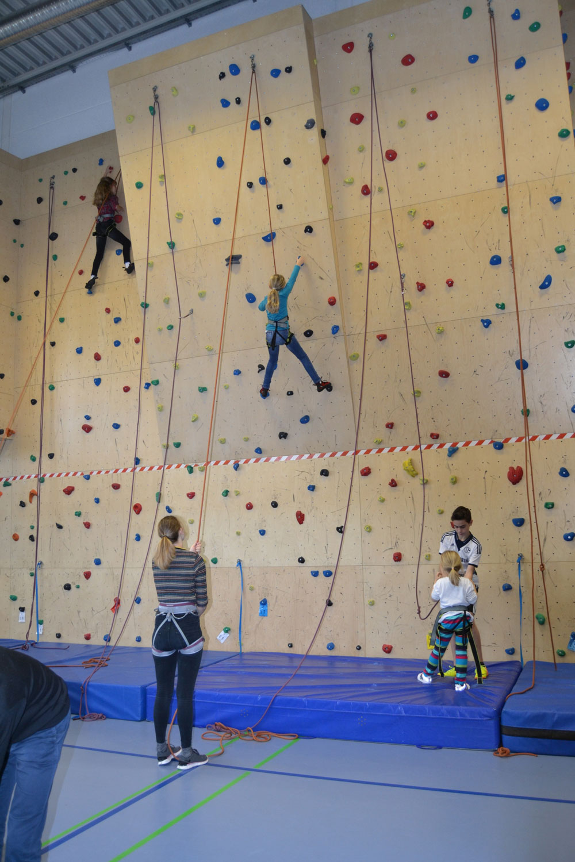 Das Bild zeigt eine Kletterwand in der Turnhalle des Anno-Gymnasiums