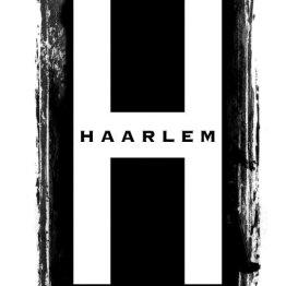 Das Bild zeigt das Logo vom Friseursalon Haarlem
