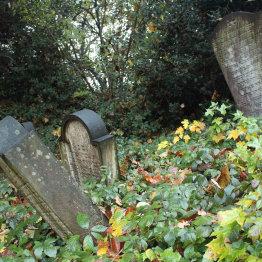 Auf dem Bild sind Grabsteine auf dem jüdischen Friedhof in Siegburg zu sehen